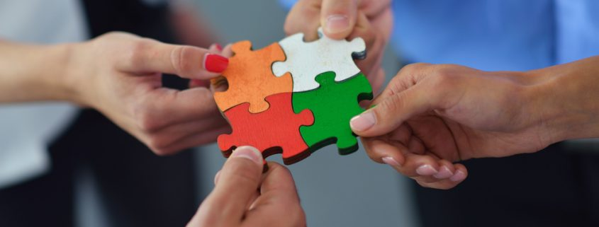 Costellazioni aziendali e organizzative